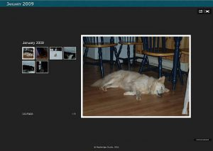XnView Review – Imagemanager